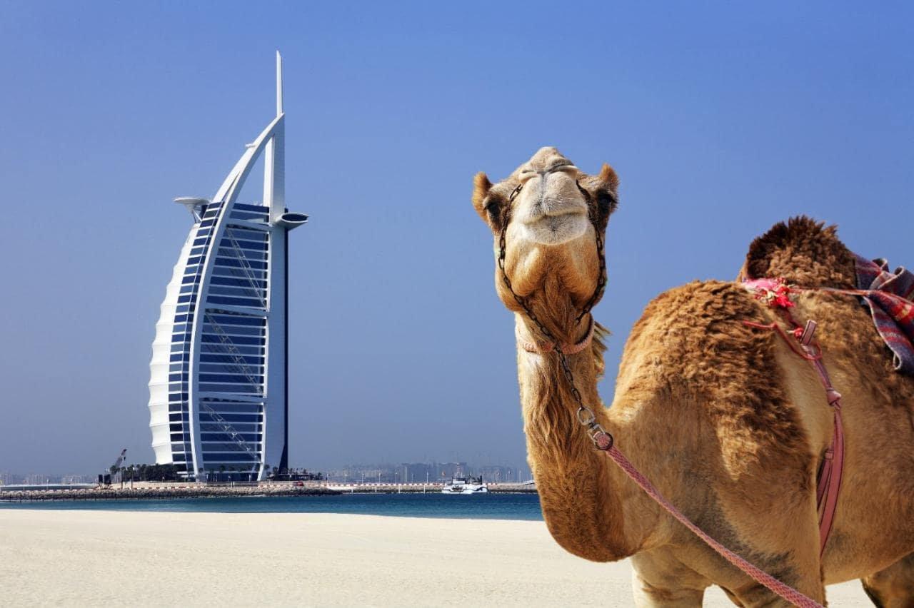 صورة أفضل الاماكن السياحية في دبي