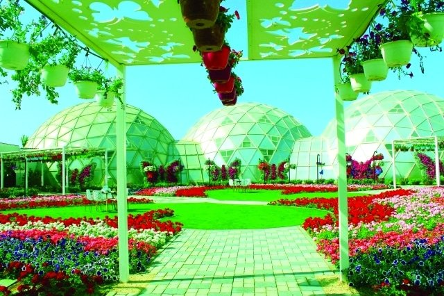 Photo of افضل 6 انشطة في حديقة الفراشات دبي
