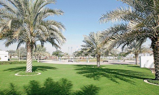 صورة حديقة القوز دبي