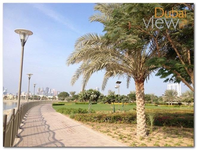 افضل 7 انشطة في حديقة بحيرة البرشاء دبي