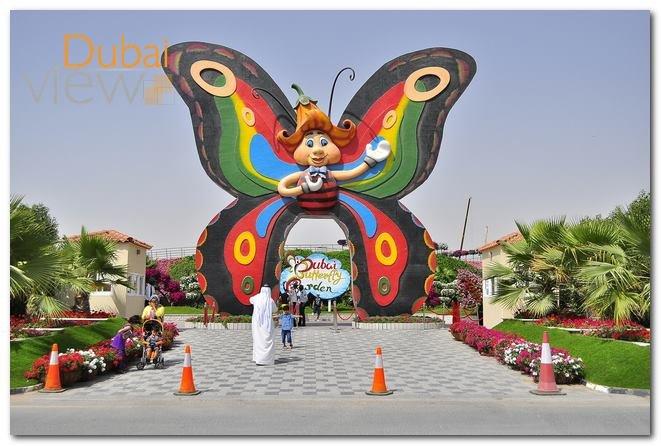 حديقة الفراشات في دبي اجمل حدائق دبي