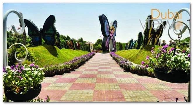متى تفتح حديقة الفراشات في دبي؟