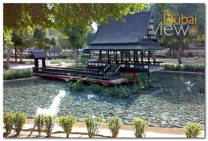 أهم الأنشطة التي يمكن القيام بها في حديقة مشرف دبي