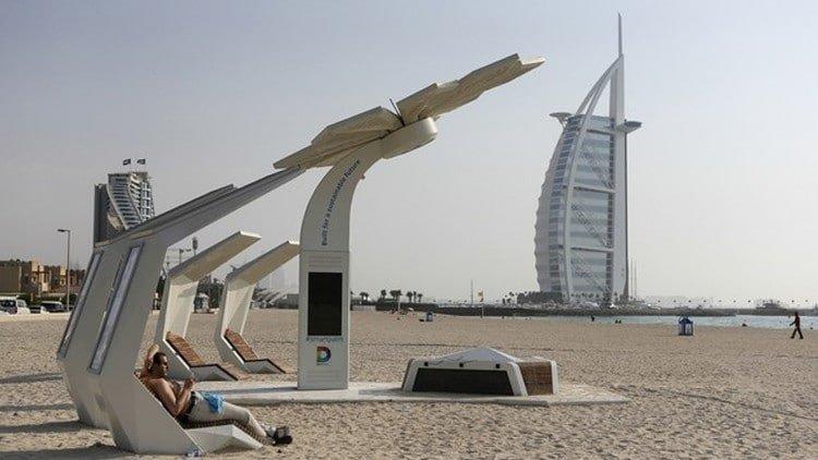 صورة ماذا تعرف عن النخلة الذكية في دبي وفيما تستخدم؟