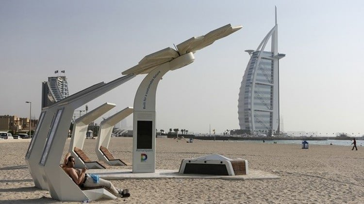 Photo of ماذا تعرف عن النخلة الذكية في دبي وفيما تستخدم؟