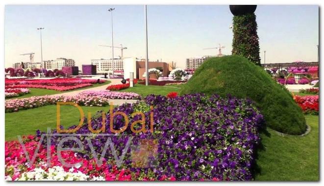 اسعار تذاكر حديقة الزهور في دبي
