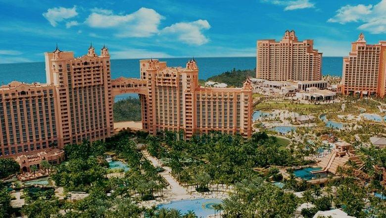 فنادق جزيرة النخلة