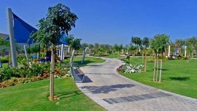 صورة أنشطة حديقة الخور في دبي – مدينة الطفل – الانشطة – أسعار التذاكر