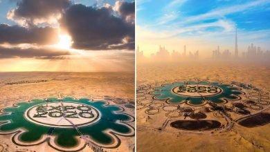 صورة 5 لقطات مذهلة لبحيرة إكسبو 2020 دبي