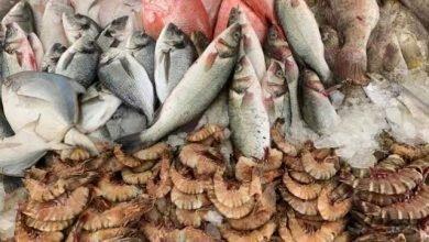 سوق السمك جميرا